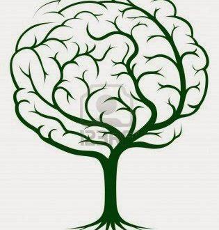 Coscienza Vegetale – Cos'è la Vita?