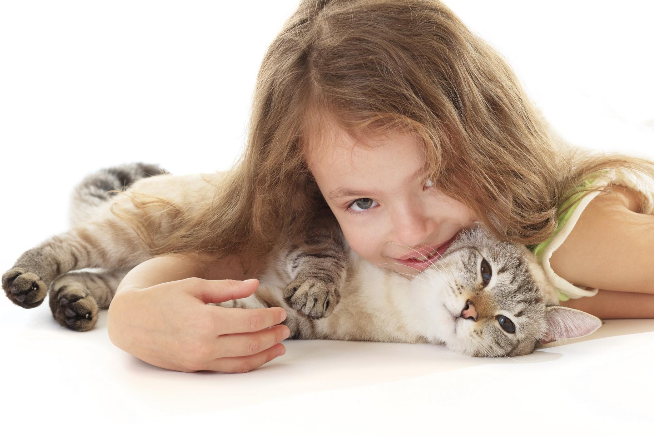 gatto bimba