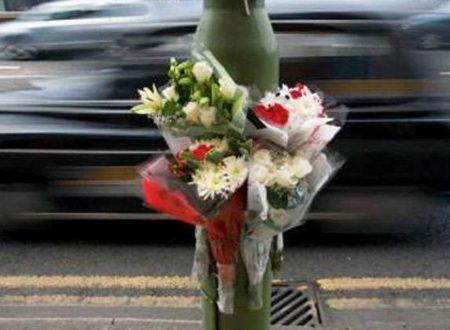 Reati in Auto – Ddl su Omicidio e Lesioni Stradali