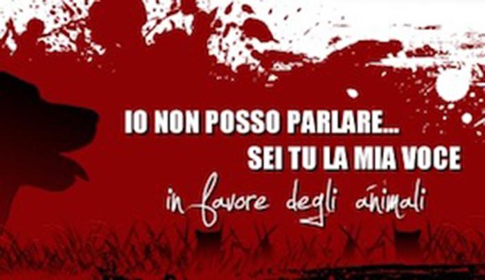 Cisternino_Donazioni1