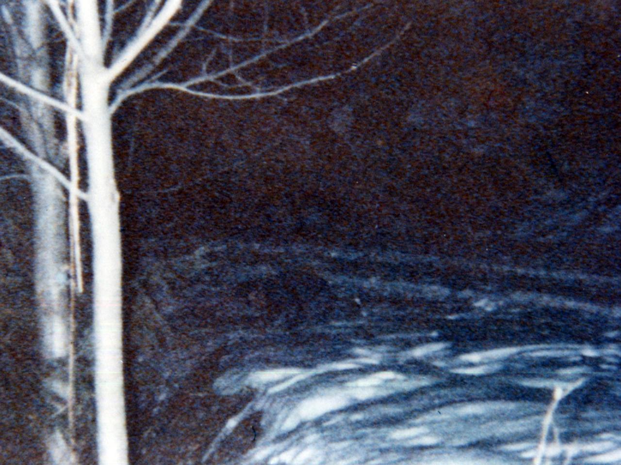 L'elfo della neve