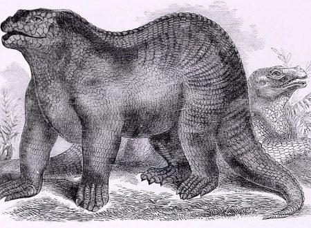 Dinosauri e Rettili – Legami del Passato