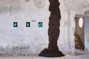 Piacenza – Inaugurato Museo della Merda