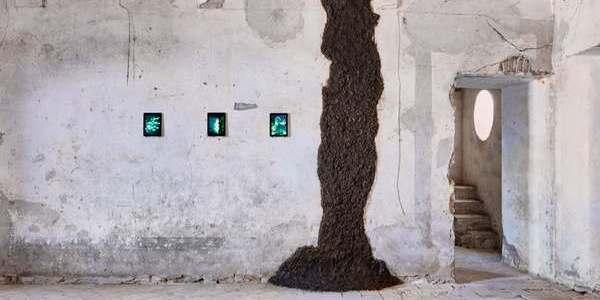 museo_della_cacca_piacenza