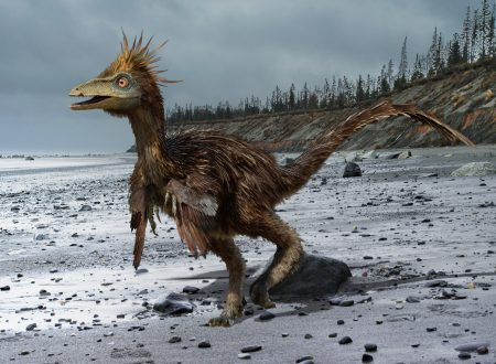 Troodon – il dinosauro intelligente