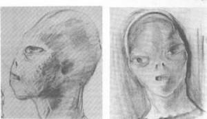 Ricostruzione dell'alieno di Betty Hill