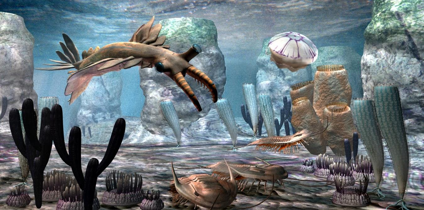 esplosione cambriano